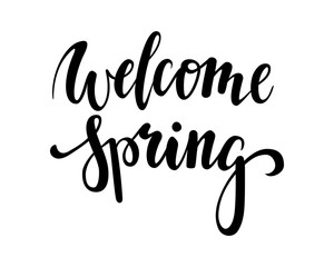 welcome Spring. Hand drawn calligraphy and brush pen lettering. design for holiday greeting card and invitation