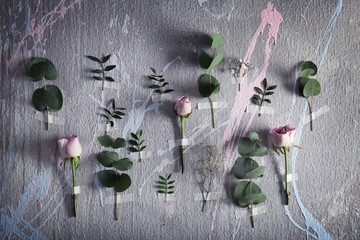 Composition of beautiful flowers taped to color background