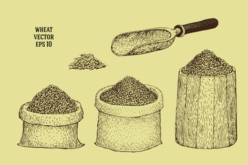 Hand drawn illustrations with wheat grains in sacks and barrels