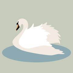 swan vector illustration style Flat