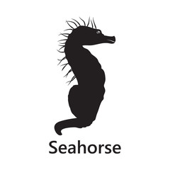 Sea horse silhouette on the white background text
