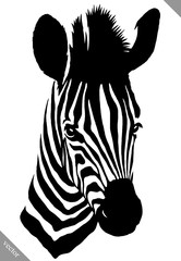 black and white linear paint draw zebra vector illustration