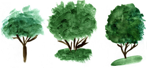 Watercolor hand drawn trees illustration. Nature design elements