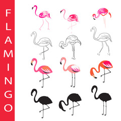 Flamingo vector set. Cartoon, outline and silhouette. Hand drawn sketch, pink coral paradise birds isolated on white.