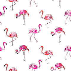 Hand drawn sketch pink flamingo seamless pattern vector. Exotic birds on white with outline strokes and hand painted coral brush strokes decoration.