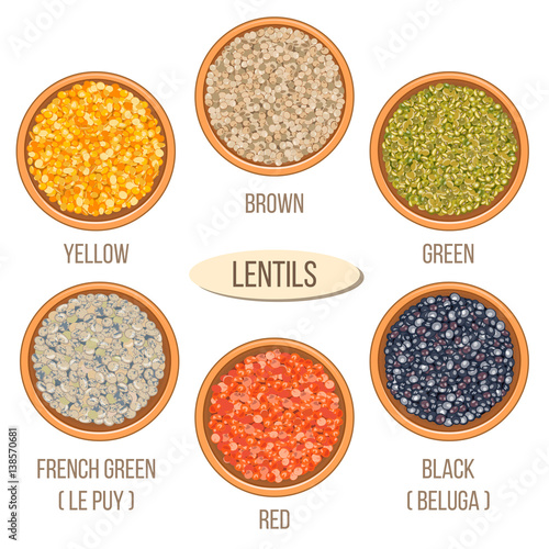 different types of lentils in bowls. yellow, brown, green, red