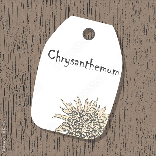 vector tag template with chrysanthemum flower in pastel colors on