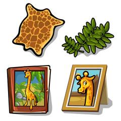 Vector set isolated of four item on giraffe theme