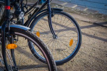rhein - bicycle