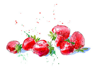 Strawberry. Image of a berries. Watercolor hand drawn illustration.