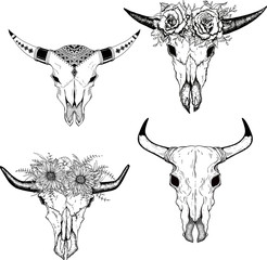 Hand drawn Buffalo Skull Native American Totem set