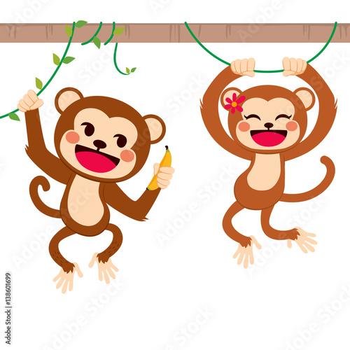 """Two cute funny monkeys on liana sharing banana fruit with ..."