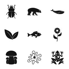 Beautiful nature icons set, simple style