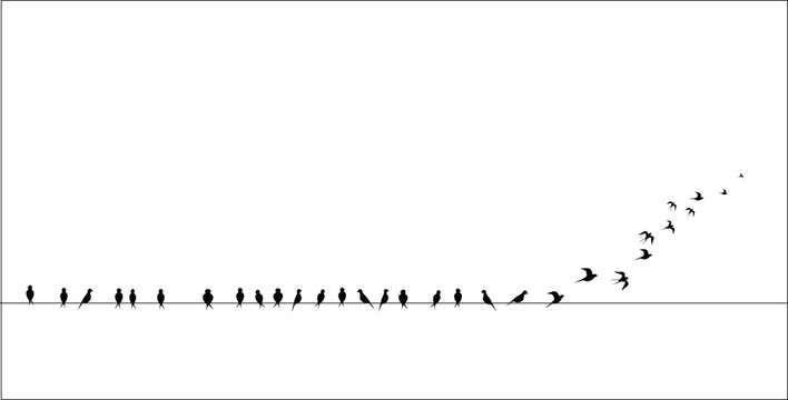 silhouettes of the birds sitting on a wire isolated, flies, vector image