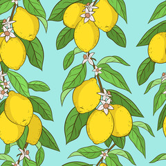 Seamless pattern with lemons. Cute vector backround. Cartoon style. Lemon branches. Citrus collection. Very colorful and bright wallpapers, fabric, design element