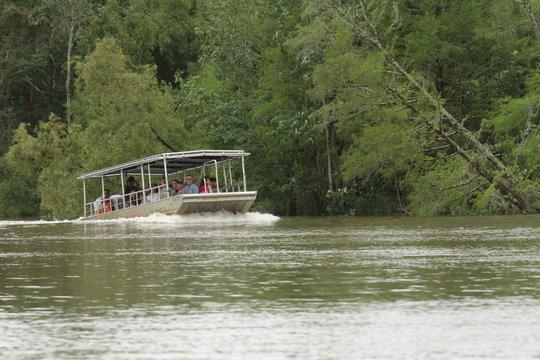 Swamp boat tour
