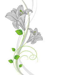 Beautiful hand-drawing floral background with green leaves and flowers lily. Vector illustration.
