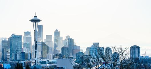 View of Seattle Day Light Winter skyline, WA, USA Wall mural