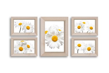 Wooden frames collage  with beautiful daisy flowers. Interior decor mock up