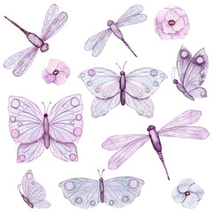 Set of Watercolor Flowers, Butterflies and Dragonflies