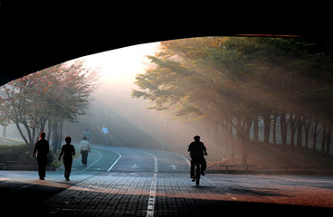 Papiers peints Tunnel man with umbrella walking to light in a misty forest