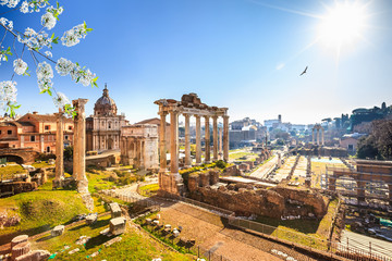Canvas Prints Rome Roman ruins in Rome at spring, Italy