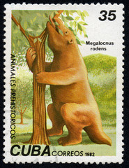 UKRAINE - CIRCA 2017: A stamp printed in Cuba, shows a extinct animal Megalocnus rodens, the series Prehistoric animals, circa 1982