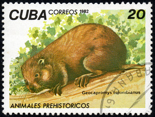 UKRAINE - CIRCA 2017: A stamp printed in Cuba, shows a extinct animal rodent Geocapromys colombianus, the series Prehistoric animals, circa 1982