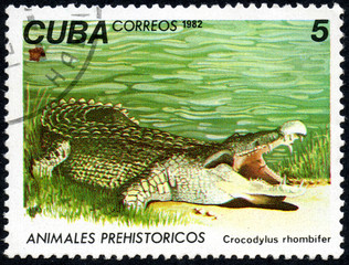 UKRAINE - CIRCA 2017: A stamp printed in Cuba, shows a Cuban crocodile Crocodylus rhombifer, the series Prehistoric animals, circa 1982