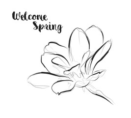 Welcome spring. Greeting card with a flower on a white background.