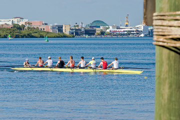 Rowers practicing on the channel in the Port of Tampa