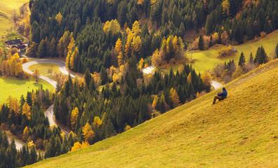 View of a the Mallnitzer Strasse road nearby town of Mallnitz, Austria