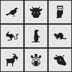 Set Of 9 Editable Zoology Icons. Includes Symbols Such As Gull, Owl, Wildlife Castor And More. Can Be Used For Web, Mobile, UI And Infographic Design.