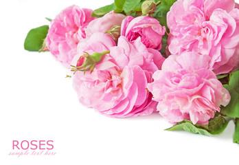 Beautiful pink rose bunch