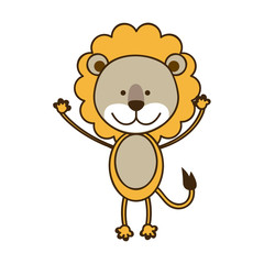 colorful picture cute lion animal vector illustration