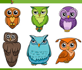 owl bird characters cartoon set