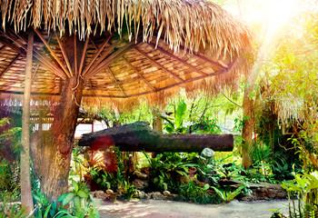 Fondo exotico de naturaleza y cartel.Palmeras y sombrilla,vegetacion tropical.