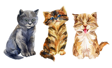 Watercolor sitting kittens set isolated on white background.