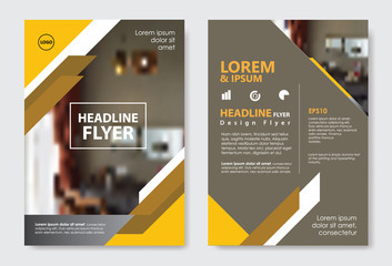 Template diagonal lines abstract design magazine brochure flyer booklet cover vector layout
