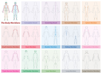 Body meridian chart of a womans body - with names and different colors - Traditional Chinese Medicine. Isolated vector illustration on white background.