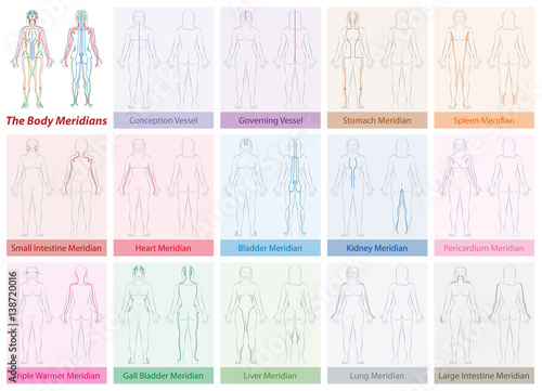 Body meridian chart of a womans body with names and different body meridian chart of a womans body with names and different colors traditional chinese ccuart Gallery