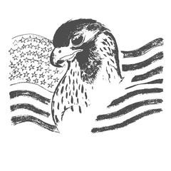 eagle and American flag, sketch, vector illustration