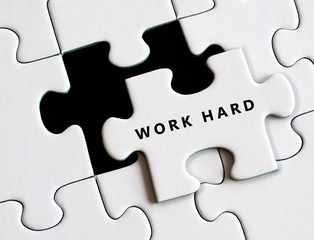 Work hard on missing puzzle