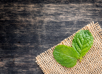 Pepper mint leaves on wood background,top view