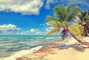 Tropical white sandy beach with palm trees. Saona Island, Dominican Republic