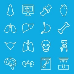 Set of 16 anatomy outline icons