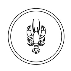 monochrome line contour with lobster in circular frame vector illustration