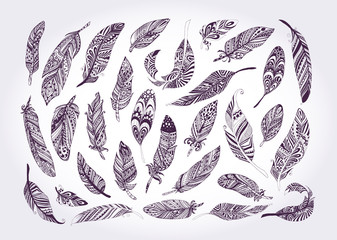 Rustic Ethnic decorative feathers. Hand drawn vintage vector design set. Black and white ink sketch illustration. Vintage Tribal and Decorative feathers.