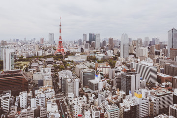 Aerial view Tokyo Tower cityscape Japan.