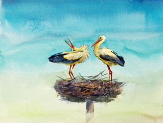 Two storks on a nest. Decoration with wildlife scene. Watercolor hand drawn illustration